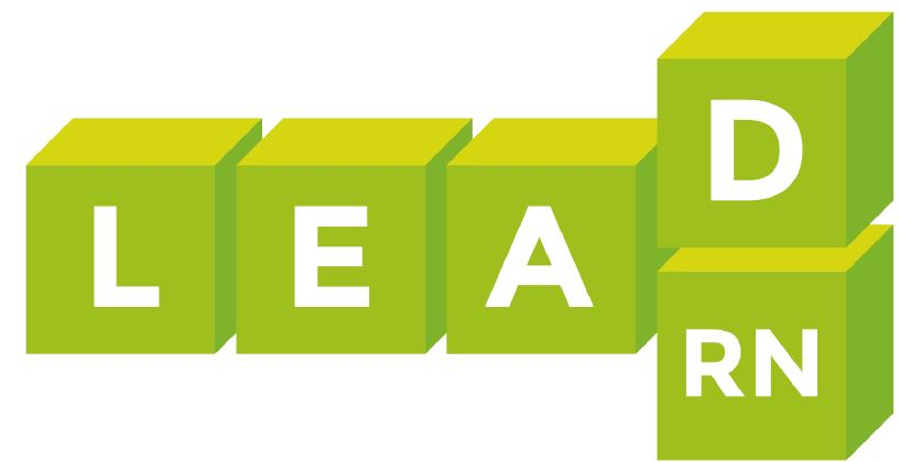Führung 4.0 – Trends und Effizienz: zukunftsweisende Ansätze zur Stärkung der Führungskompetenz im Gesundheitsbereich