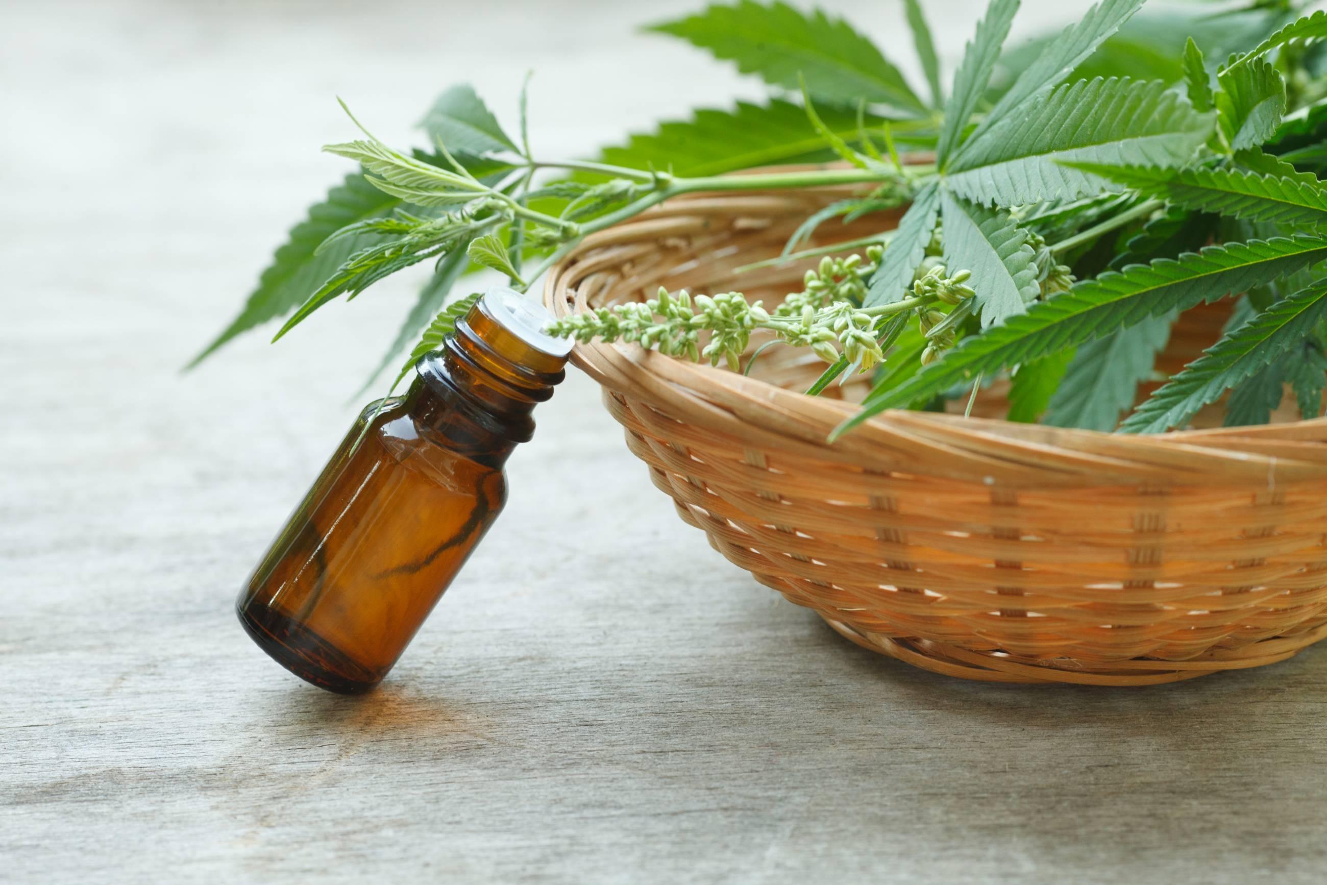 cannabis-medizin