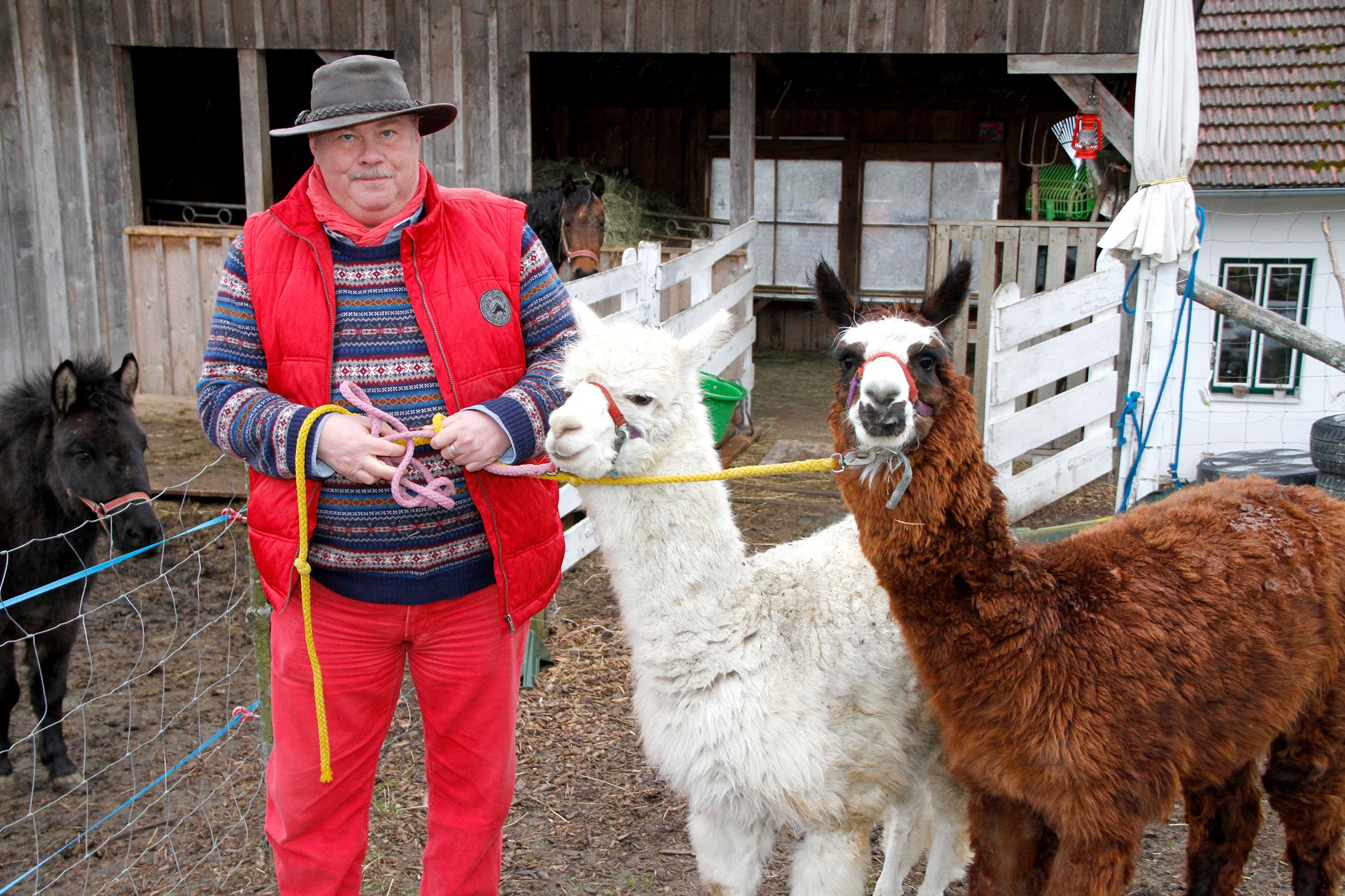 schuhmayer-groszmotten-alpaca
