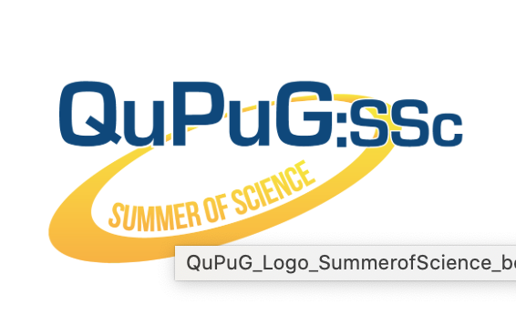 QuPuG Summer of Science 2021 - Vienna